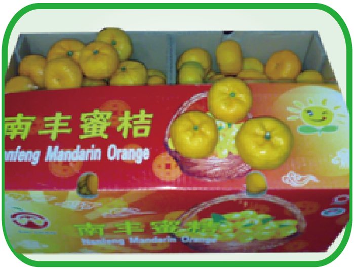 南丰蜜桔 Honey mandarin